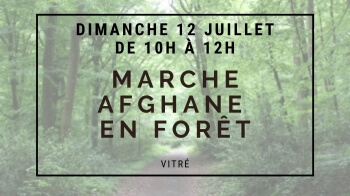 MARCHE-MEDITATIVE-FORET